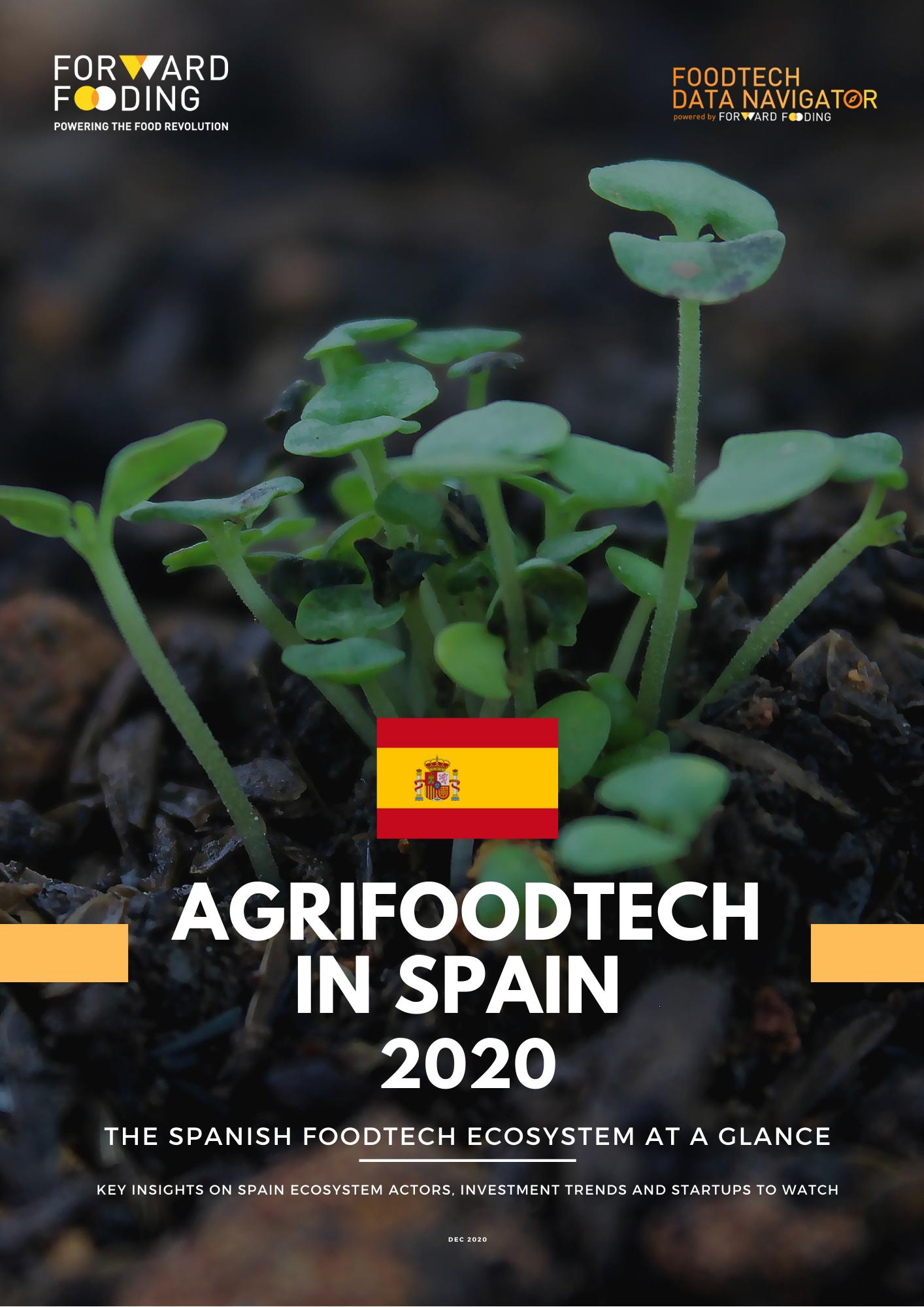 Spain Report 2020 vertical cover (1)